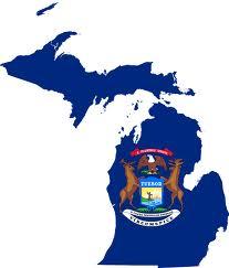 MichiganStateFLag